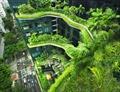 """Kiến trúc xanh: Đi tìm """"khoảng thở"""" cho phố"""