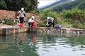 Nước sạch sông Đà: Sáng khuyến cáo chỉ dùng tắm giặt, chiều công bố an toàn