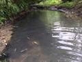 Viwasupco liệu có cố tình lấp liếm vụ nước nhiễm dầu?