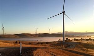 Dự báo lạc quan về tình hình năng lượng sạch của thế giới năm 2018