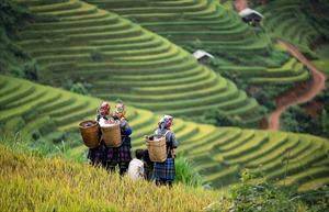 Hiệp hội Du lịch Việt Nam phát động chương trình kích cầu du lịch Tây Bắc