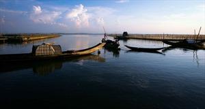 """Kỳ II: Ghé Tam Giang thưởng ngoạn một vùng """"cá nước chim trời"""" nơi đầm phá"""