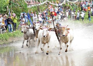 Phát triển du lịch vùng đồng bào dân tộc thiểu số Khmer