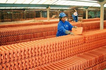 Bà Rịa - Vũng Tàu: Chấp thuận chủ trương đầu tư dự án Nhà máy gạch ngói cao cấp Mỹ Xuân - Châu Đức