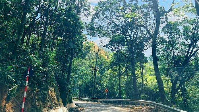 """Vườn quốc gia Ba Vì: """"Lá phổi xanh"""" của Thủ đô"""