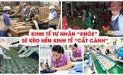 Kinh tế tư nhân: Một chặng đường của sự đổi thay