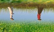 """Người đàn bà trong """"Mùa hoa cải bên sông"""""""