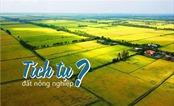 Tiềm năng bất động sản nông nghiệp 2020: Mở nút thắt tích tụ đất đai