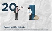 Sửa đổi Nghị định 20: Cần cho phép hồi tố mới đảm bảo quyền lợi của doanh nghiệp