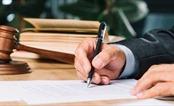 Các thành viên Chính phủ bỏ phiếu đồng ý hồi tố khoản 3, Điều 8, Nghị định 20