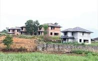 Nhiễu thông tin sốt đất tại Yên Bài, Ba Vì