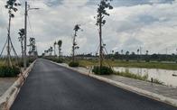 Bất động sản Đồng Nai, Bà Rịa - Vũng Tàu: Bùng phát phân lô bán nền