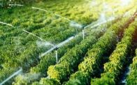 Tập đoàn GFS dẫn đầu xu hướng phát triển nông nghiệp hữu cơ trên nền tảng công nghệ hiện đại