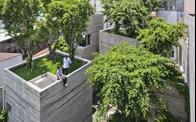 Sự khác biệt giữa công trình xanh, kiến trúc xanh và nội thất xanh