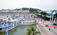 Bất động sản 24h: Tuần Châu bất ngờ thông báo thu phí qua cảng