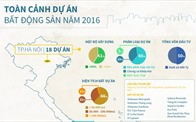[Infographic] Toàn cảnh dự án BĐS Việt Nam năm 2016