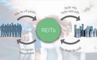 Quỹ đầu tư bất động sản tín thác - cơ hội mới cho các nhà đầu tư