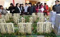 Việt Nam sẽ trở thành mục tiêu của giới đầu tư quốc tế