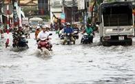 TP.HCM xin cơ chế riêng để đẩy nhanh tiến độ thực hiện các dự án chống ngập