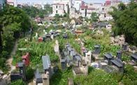 Bán đấu giá gần 50% diện tích đất nghĩa trang Bình Hưng Hòa