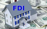 TS. Lưu Bích Hồ: Không nên thu hút vốn FDI quá nhiều vào bất động sản