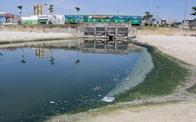 Đà Nẵng: Xử phạt 9 khách sạn, dự án xả nước gây ô nhiễm môi trường biển