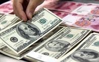Ngân hàng Nhà nước đề xuất bổ sung quy định xử lý ngoại tệ giả
