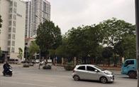 Hà Nội: Dân phản đối giao đất công viên cho Công ty Tây Hồ làm bãi đỗ xe, dịch vụ thương mại