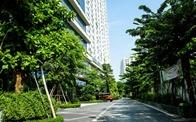 Lợi ích dài hạn của công trình xanh trong bối cảnh ô nhiễm nước, không khí