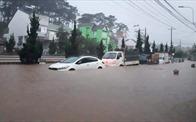 """Ngập lụt ở Đà Lạt, Phú Quốc: """"Chưa có hạ tầng, chưa giao đất dự án"""""""