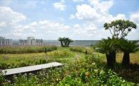 Khu vườn tiện ích và những giá trị nhân văn tại Imperia Sky Garden