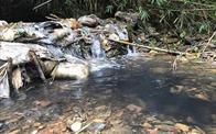 """""""Công ty nước sạch Sông Đà phải bồi thường thiệt hại hoàn toàn"""""""