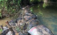 Có đủ cơ sở để khởi tố Công ty nước sạch sông Đà?