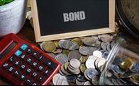 Đầu tư trái phiếu: Đã đến lúc cảnh báo nhà đầu tư cá nhân