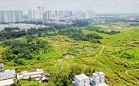 Thanh tra việc chuyển đổi mục đích sử dụng đất của DNNN trong 2020