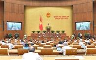 Đề xuất không đưa hộ kinh doanh vào dự thảo Luật Doanh nghiệp sửa đổi