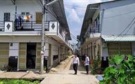 Bất động sản 24h: Báo động đầu cơ đất nông nghiệp ở Cần Thơ