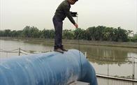 Hải Phòng: Khắc phục, xử lý nước sinh hoạt có vị lợ, nhiễm mặn