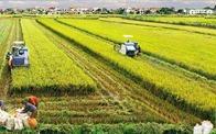 Bộ Tài chính đề xuất miễn thuế sử dụng đất nông nghiệp trong 10 năm