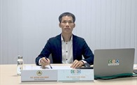 Phó Chủ tịch VNREA: Bất động sản Việt Nam sẽ có bước tiến đột phá sau đại dịch
