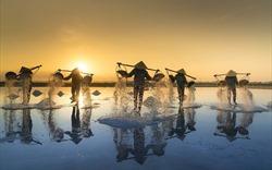 Nha Trang - Ninh Thuận - Đà Lạt: Tam giác du lịch quyến rũ bậc nhất cả nước