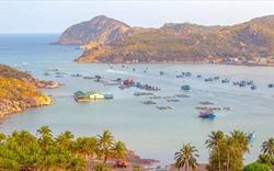 Vĩnh Hy: Nơi hội tụ vịnh biển xanh và rừng thẳm