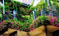 Trang trí ban công đẹp sẽ tạo vận khí tốt cho ngôi nhà