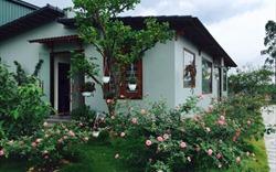 Ngôi nhà hoa hồng xinh xắn, lãng mạn cách Hà Nội hơn 1 giờ đi ô tô