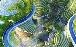 Những người tiên phong biến Ấn Độ thành trung tâm xây dựng xanh