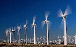 Biến đổi khí hậu không phải là mối nguy hại đối với năng lượng gió giá rẻ