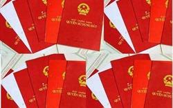 Cấp sổ đỏ: Hà Nội áp dụng Nghị định 01/2017, không chờ thông tư