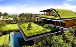 Mái nhà xanh tại các thành phố của tương lai