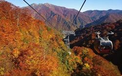 """Hoá giải """"tử huyệt"""" ở ngọn núi lãng mạn xứ mặt trời mọc Tanigawa"""