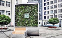 """Xuất hiện loại cây """"công nghệ cao"""" có thể lọc không khí ô nhiễm"""